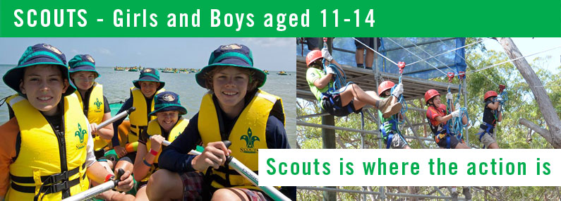 Parkwood Heights Scouts